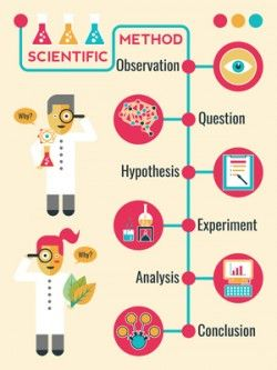 Illustration of Scientific Method Infographic Timeline Chart