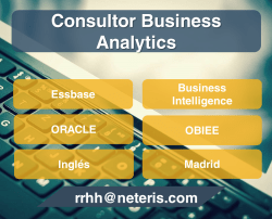 consultor analytics madrid essbase