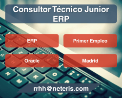consultor junior erp madrid