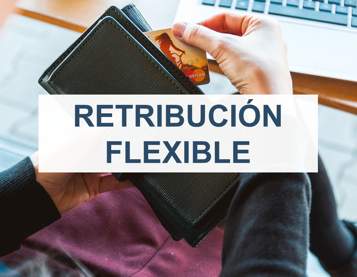 retribucion flexible 2